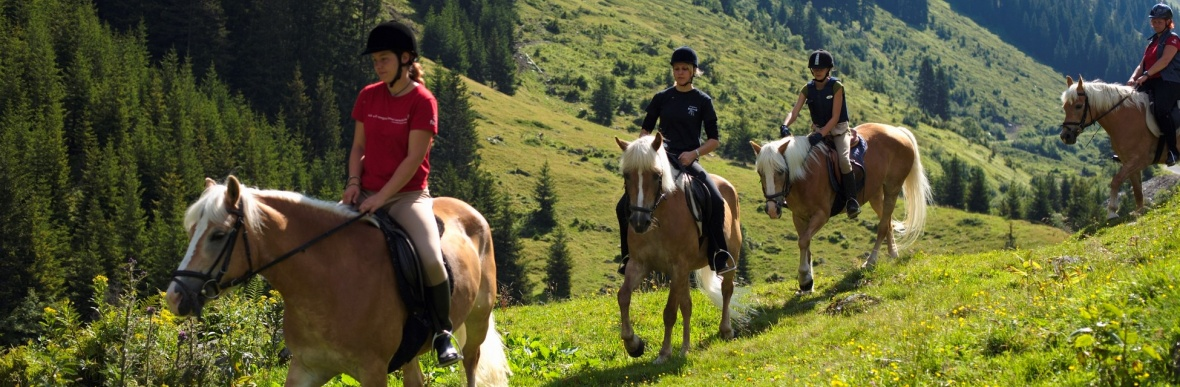 Riding lessons, hotel's own riding stable, Haflinger mares, Vorarlberg