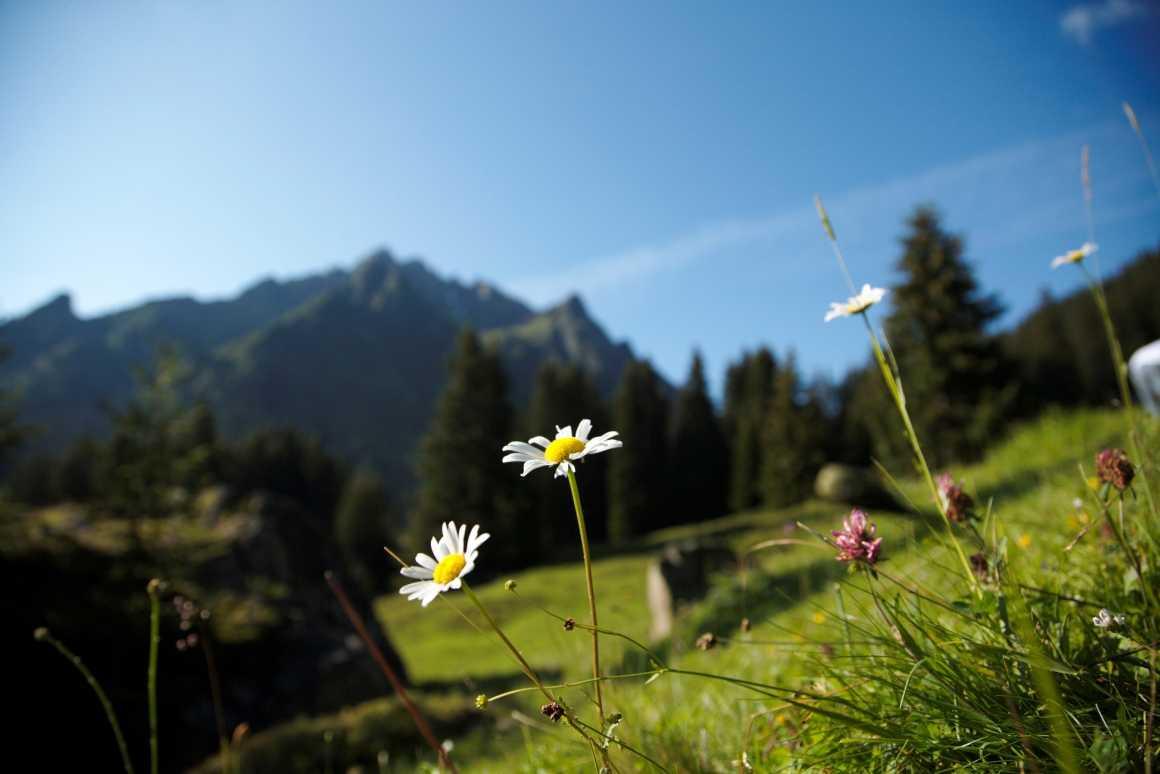Webcam, Livecam Wandergebiet Gargellen, Montafon, Vorarlberg