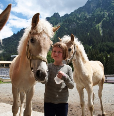 Hotel's own riding stable in the mountains of Vorarlberg
