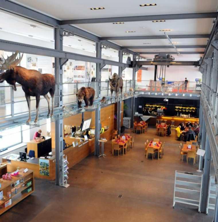 Ausflugstipps für Familienurlaub in Vorarlberg, Österreich