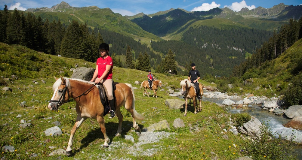 Riding holidays with Haflinger horses of hotel's own riding stable